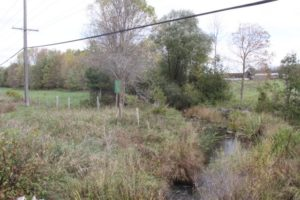 stream Tributary fencing